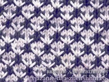 dvuhcvetnyj-uzor-spicami-12.jpg