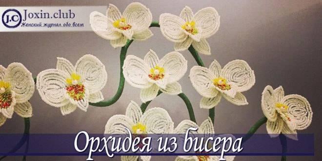 orhideya-iz-bisera-min.jpg